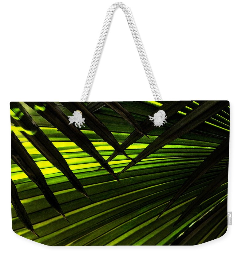 Palm Weekender Tote Bag featuring the photograph Leaves Of Palm Color by Marilyn Hunt