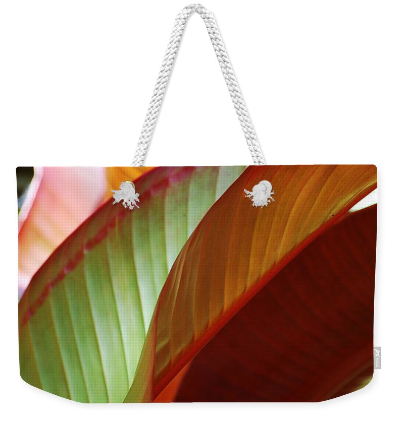 Leaves Weekender Tote Bag featuring the photograph Leaves by Robert Meanor