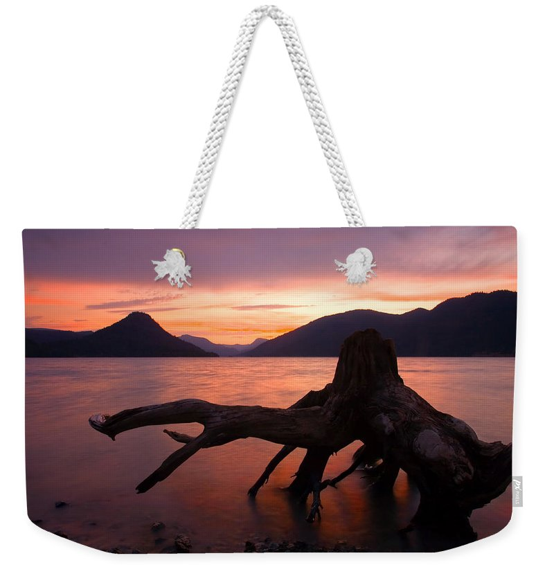 Stump Weekender Tote Bag featuring the photograph Left Behind by Mike Dawson