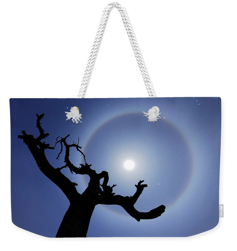 Weekender Tote Bag featuring the photograph Lei Wang 08 by Lei Wang