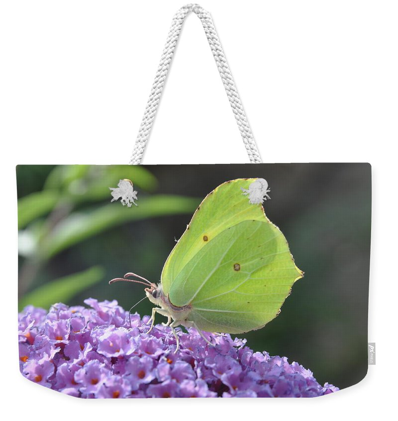 Butterfly Weekender Tote Bag featuring the photograph Lemon Wings by Eduard Meinema