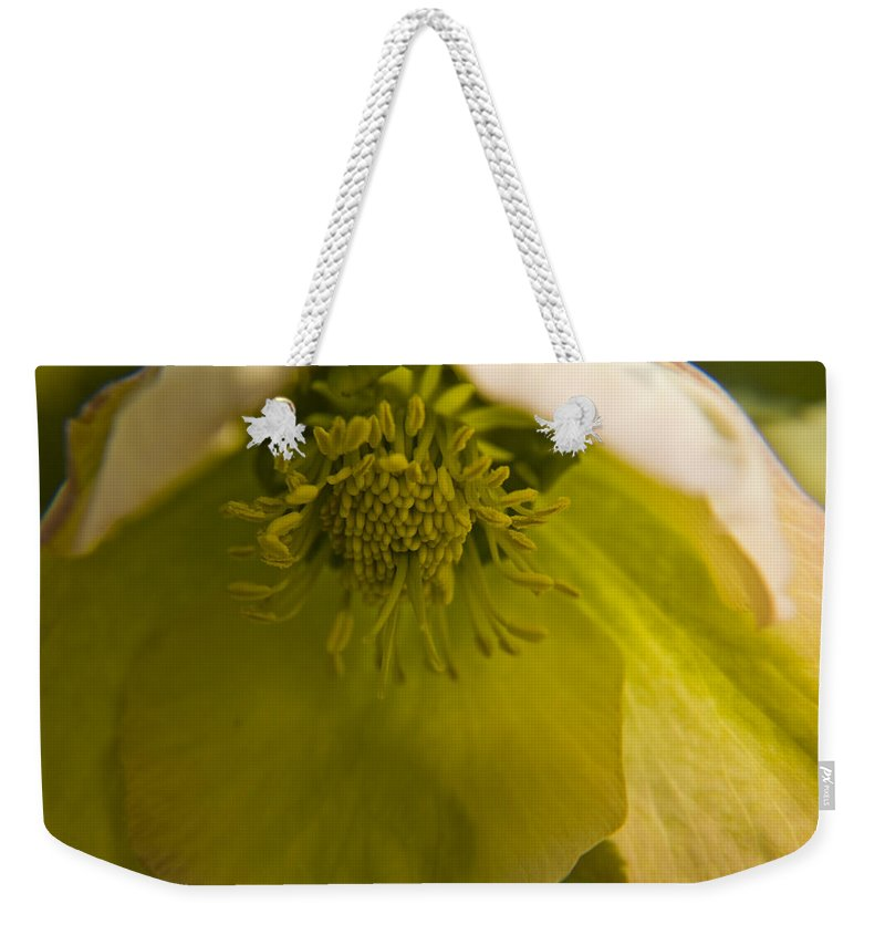 Flower Weekender Tote Bag featuring the photograph Lenten Rose Interior by Teresa Mucha