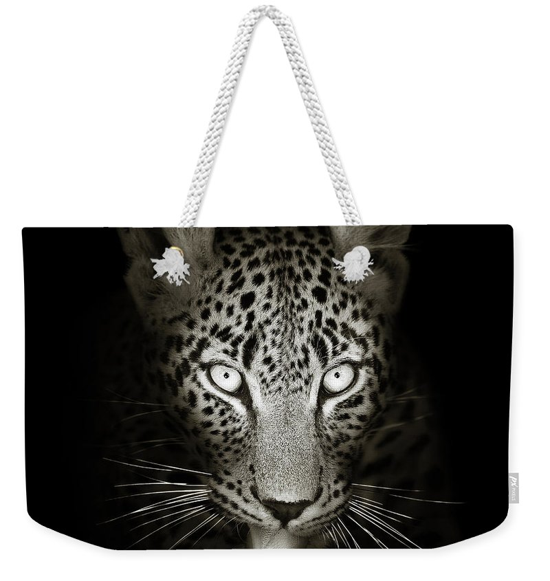 Leopard Weekender Tote Bag featuring the photograph Leopard Portrait In The Dark by Johan Swanepoel