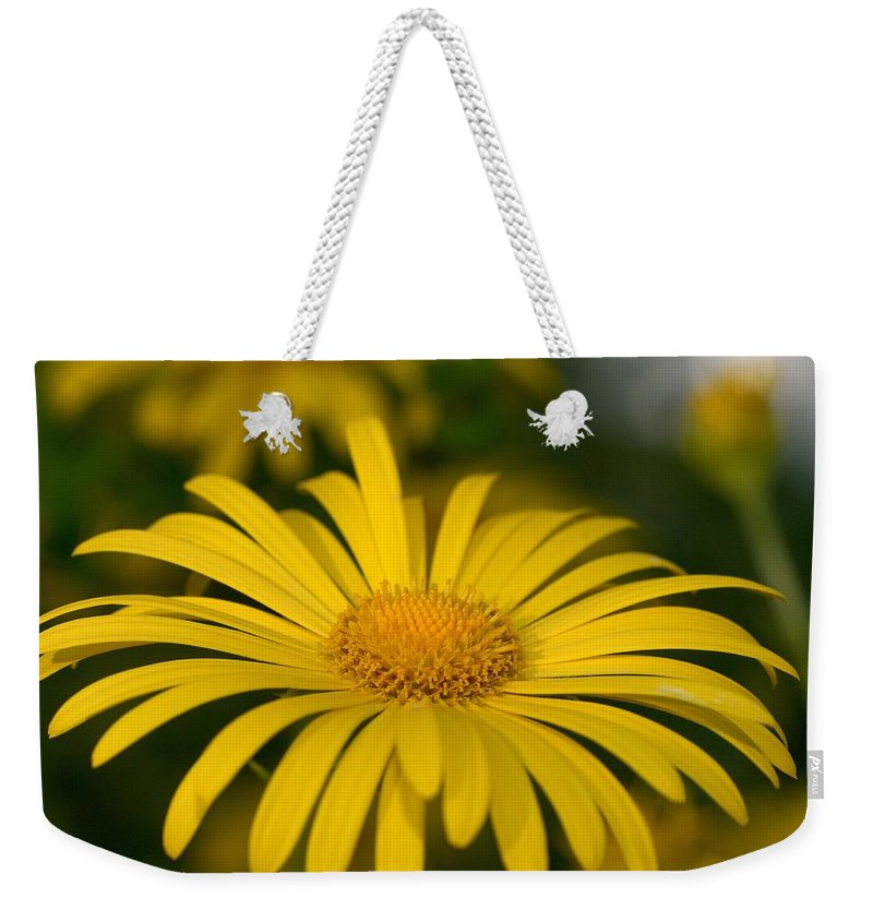 Leopard's Bane Weekender Tote Bag featuring the photograph Leopard's Bane 2 by Jouko Lehto