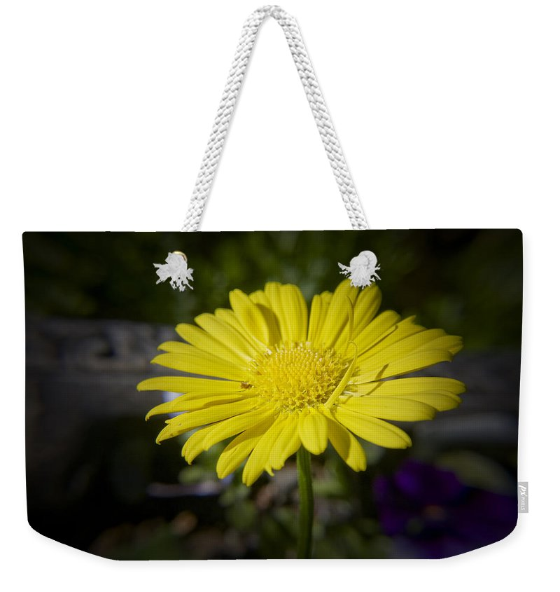 Leopard's Weekender Tote Bag featuring the photograph Leopard's Bane by Teresa Mucha