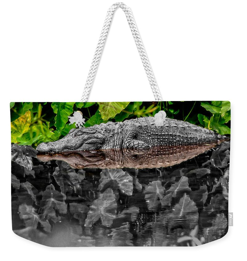 American Weekender Tote Bag featuring the photograph Let Sleeping Gators Lie - Mod by Christopher Holmes