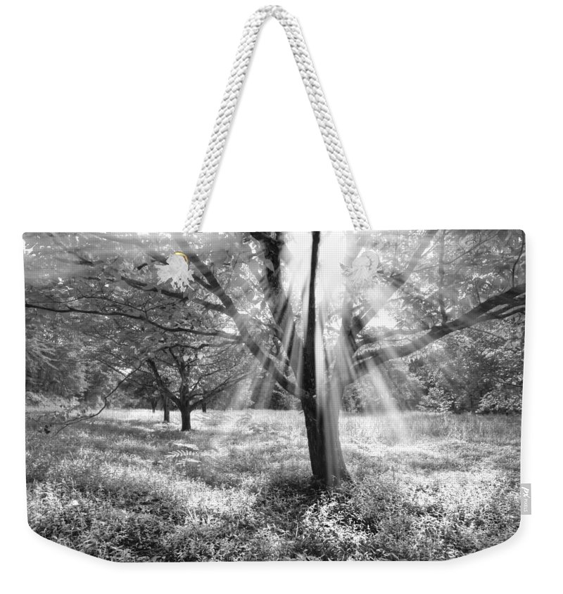 American Weekender Tote Bag featuring the photograph Let There Be Light by Debra and Dave Vanderlaan