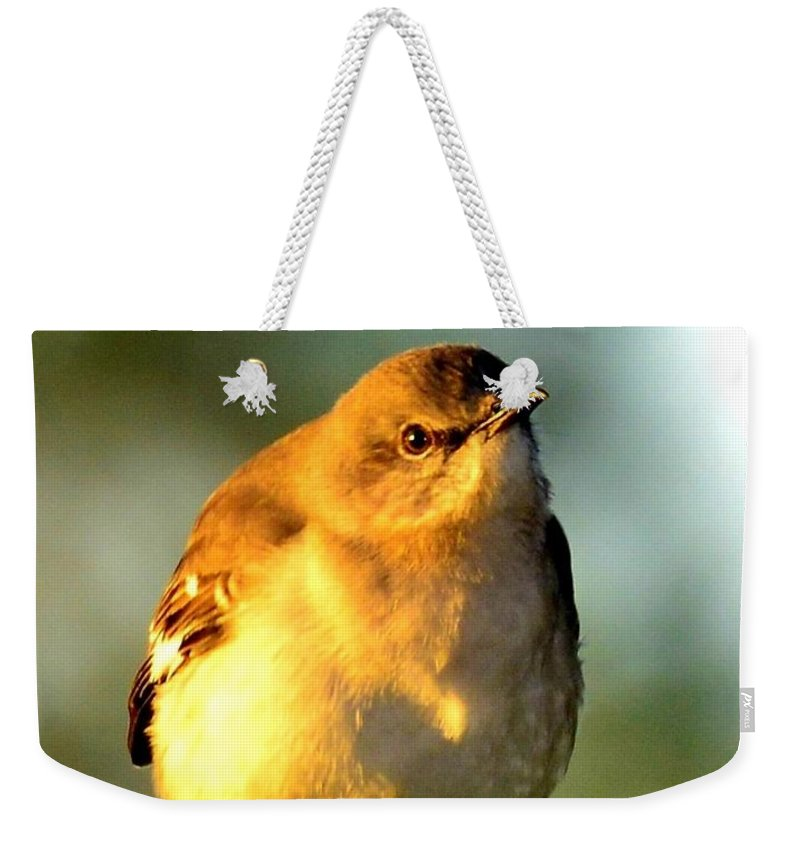 Let Your Light Shine Weekender Tote Bag featuring the photograph Let Your Light Shine by Lisa Renee Ludlum