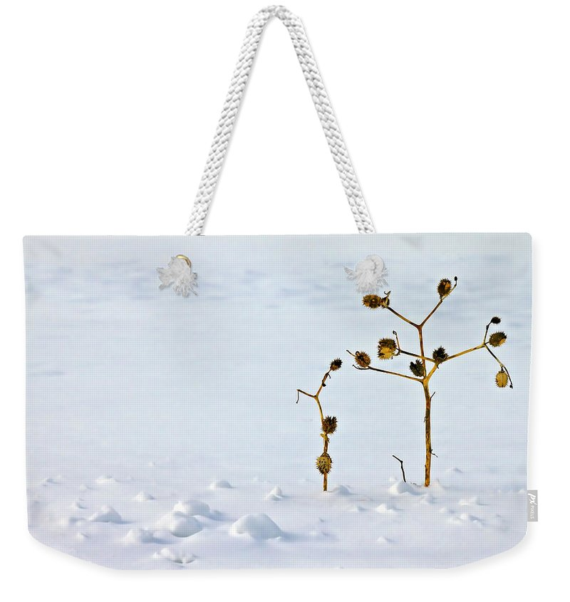 Blur Weekender Tote Bag featuring the photograph Let's Stick Together by Evelina Kremsdorf