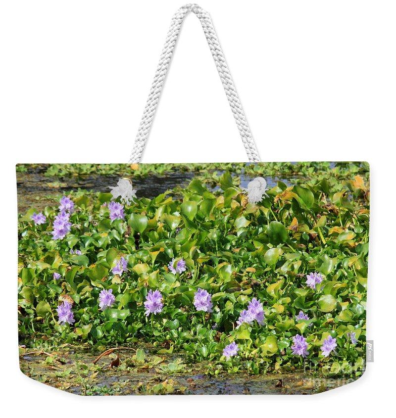 Wetlands Weekender Tote Bag featuring the photograph Lettuce Lake Flowers by Carol Groenen