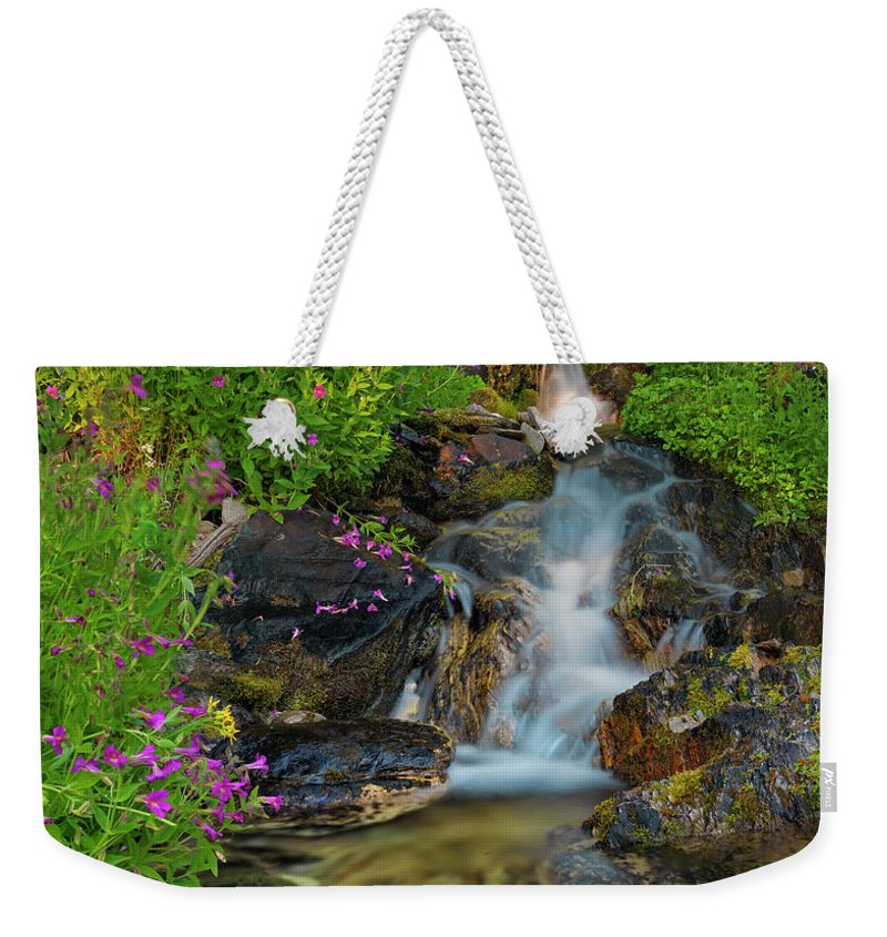 Beaverhead Mountains Weekender Tote Bag featuring the photograph Lewis Monkey Flowers And Cascade by Leland D Howard
