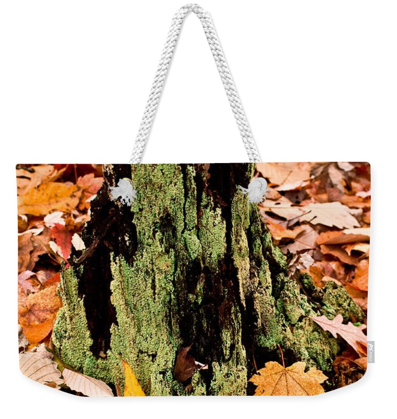 Lichen Weekender Tote Bag featuring the photograph Lichen Castle In Autumn Leaves by Douglas Barnett