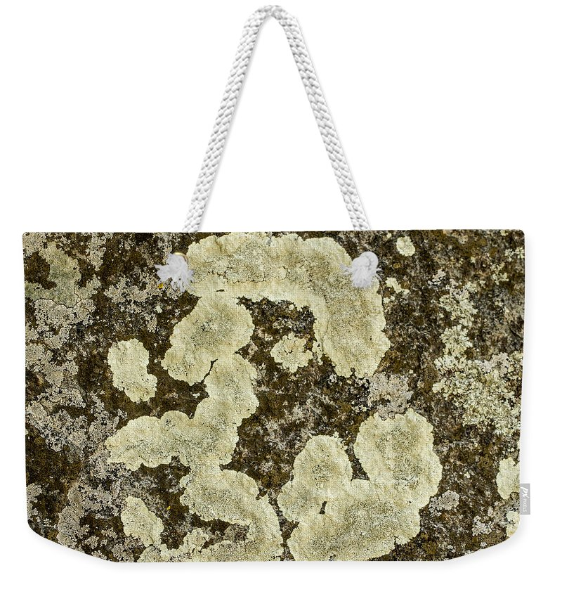 Jean Noren Weekender Tote Bag featuring the photograph Lichen Design by Jean Noren