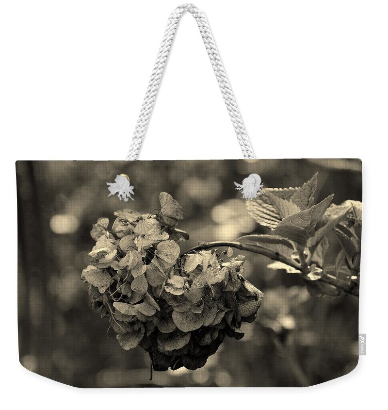 Life And Death Weekender Tote Bag featuring the photograph Life And Death by Susanne Van Hulst