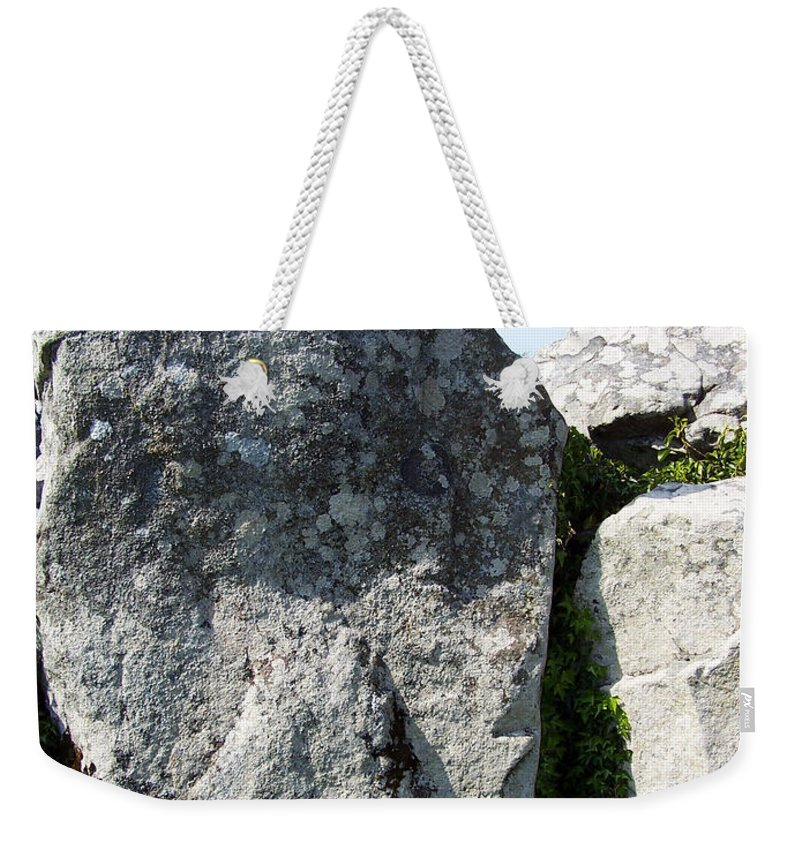 Irish Weekender Tote Bag featuring the photograph Life At Creevykeel Court Cairn Sligo Ireland by Teresa Mucha