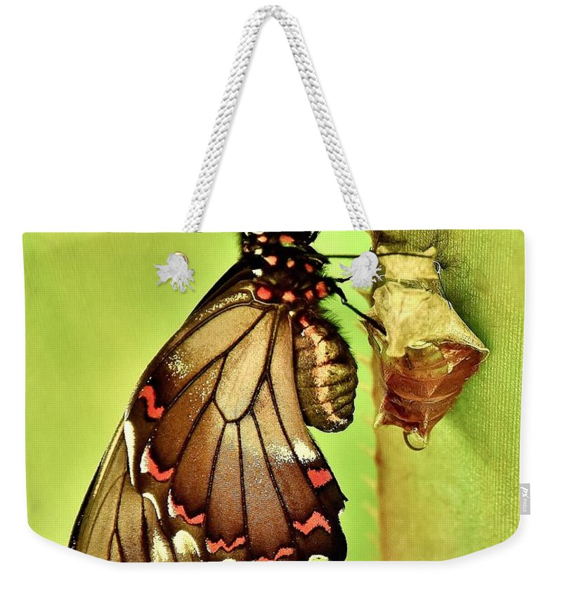 Butterfly Weekender Tote Bag featuring the photograph Life Erupts by Lisa Renee Ludlum