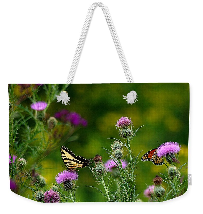 Butterfly Weekender Tote Bag featuring the photograph Life In The Meadow by Jenny Gandert