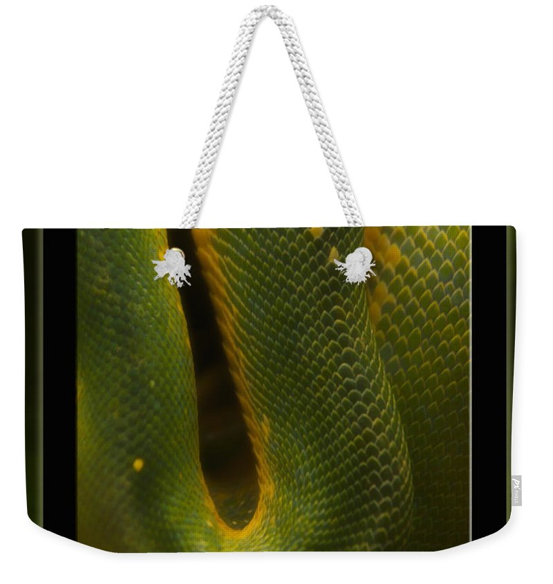 Snake Weekender Tote Bag featuring the mixed media Life Is Not Curling Up And Giving Up by Thomas Woolworth