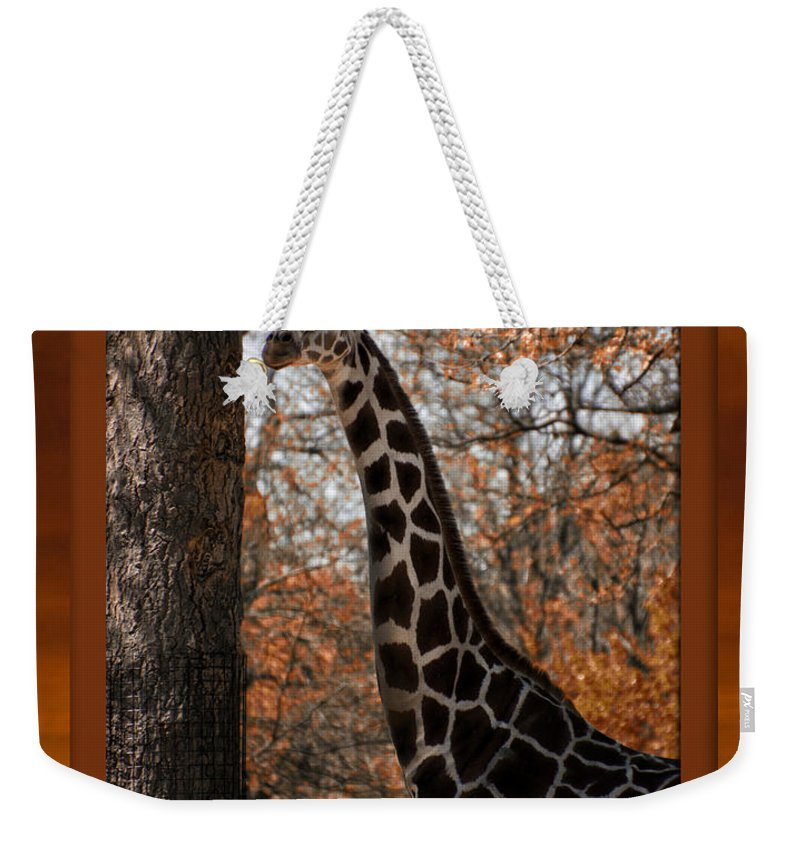 Giraffe Weekender Tote Bag featuring the mixed media Life Is Standing Tall by Thomas Woolworth