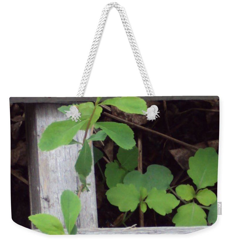 Weekender Tote Bag featuring the photograph Life by Line Gagne