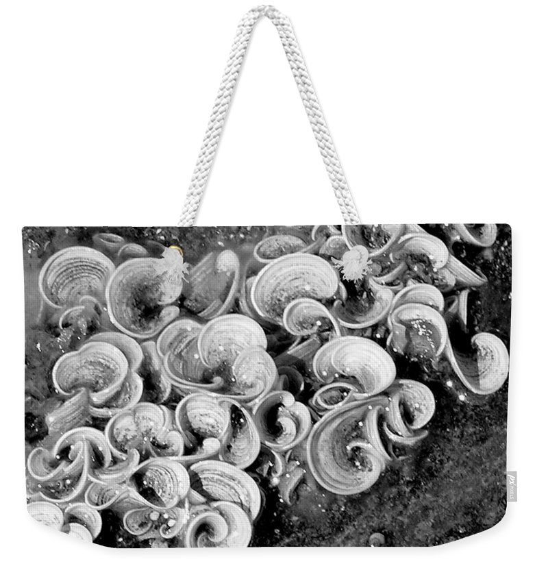 Mary Deal Weekender Tote Bag featuring the photograph Life On The Rocks In Black And White by Mary Deal