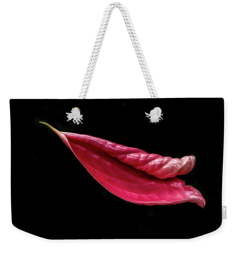 Shape Weekender Tote Bag featuring the photograph Life Unfurls by David Kay