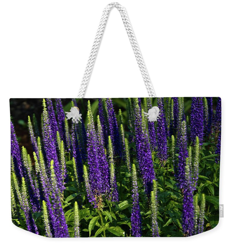 Lifting Weekender Tote Bag featuring the photograph Lifting To The Stars by Douglas Barnett