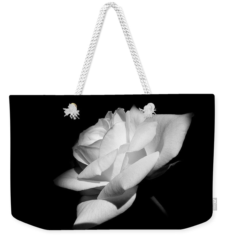 Rose Weekender Tote Bag featuring the photograph Light On Rose Black And White by Jennie Marie Schell