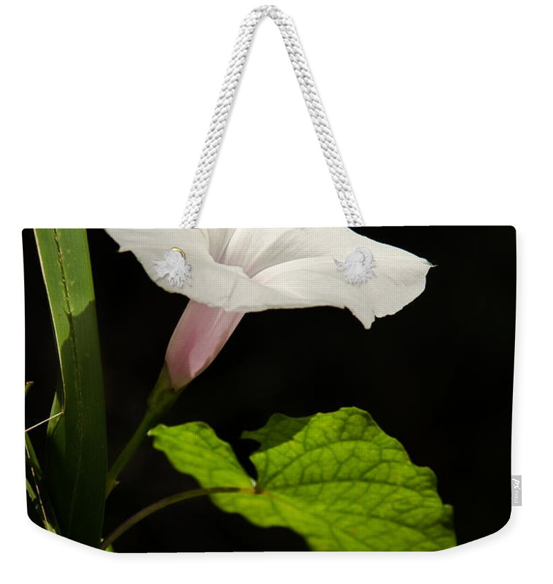 Flower Weekender Tote Bag featuring the photograph Light Out Of The Dark by Christopher Holmes