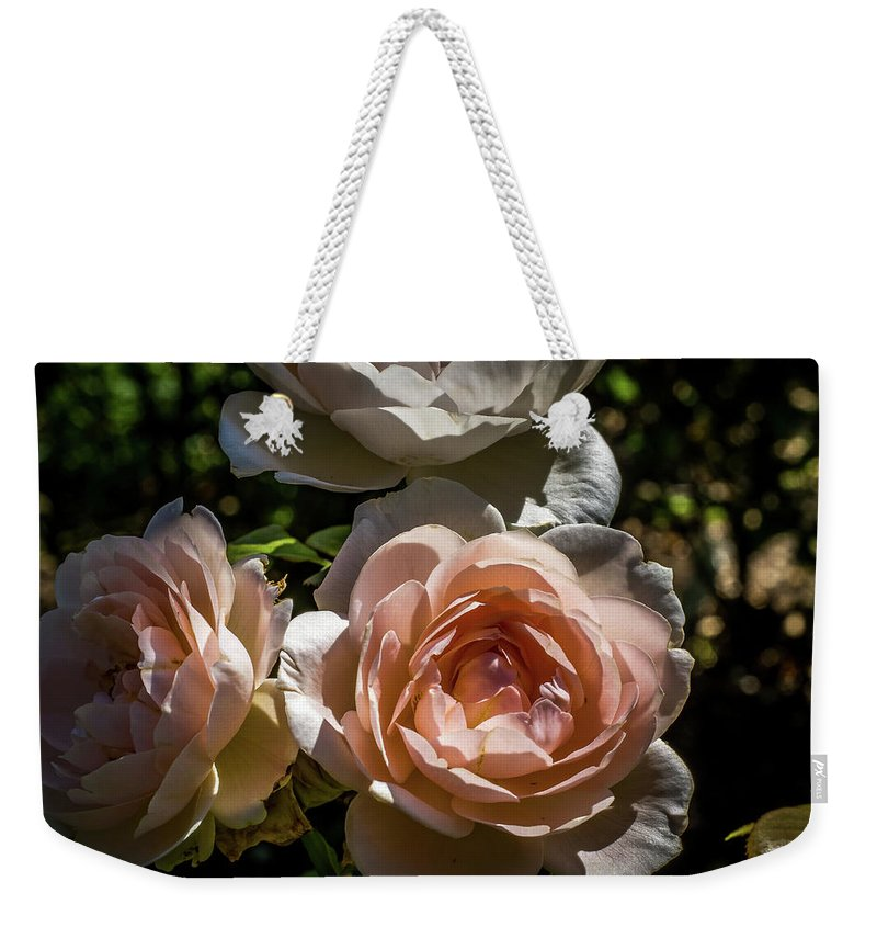 Natural Weekender Tote Bag featuring the photograph Light Pink Roses by Howard Roberts