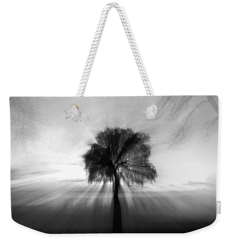 Tree Weekender Tote Bag featuring the photograph Light Play by Mandy Frank