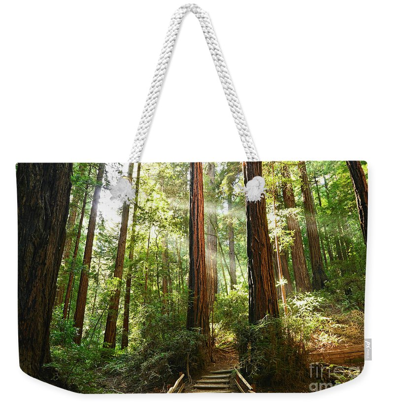Sequoia Grove Photographs Weekender Tote Bags