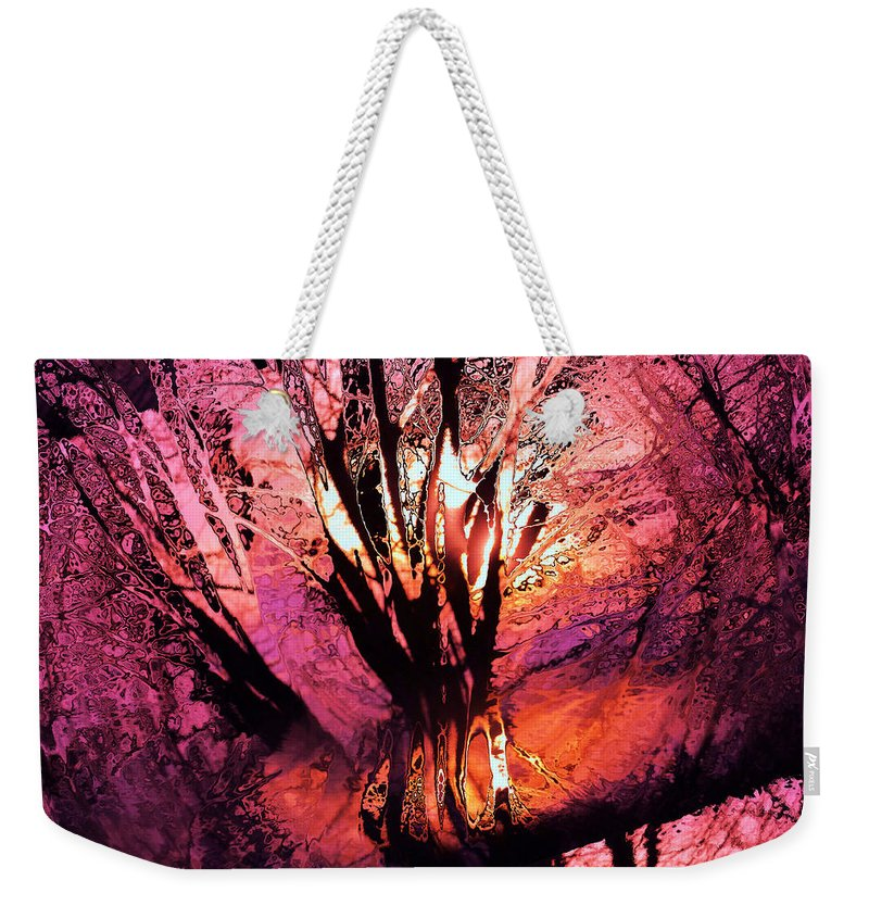 Trees Weekender Tote Bag featuring the photograph Light Through The Trees by Jeff Swan