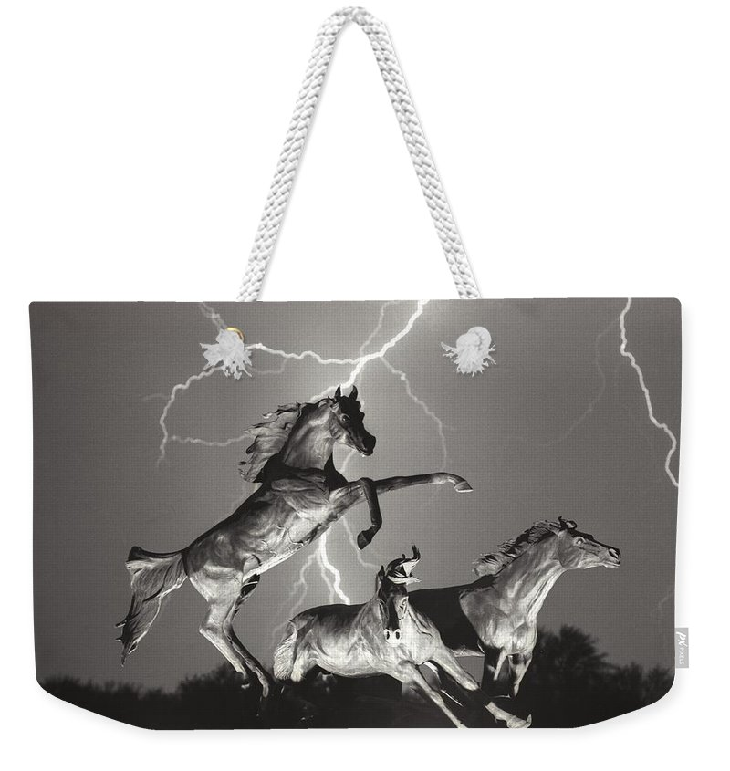 Horses Weekender Tote Bag featuring the photograph Lightning At Horse World by James BO Insogna
