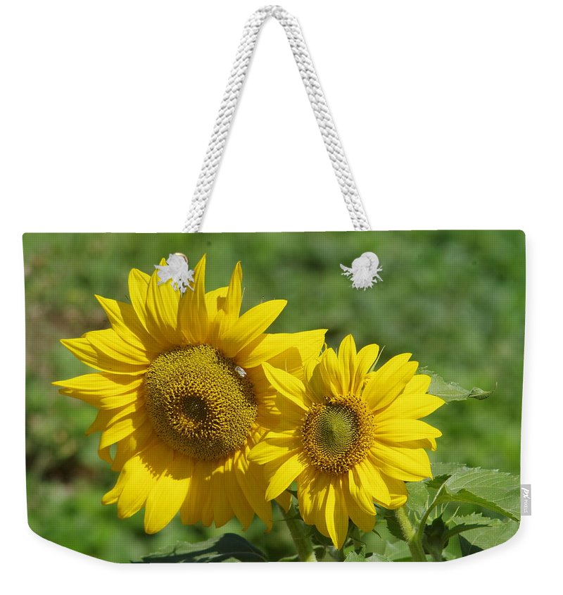 Sunflowers Weekender Tote Bag featuring the photograph Like Two Smiles In Bloom by Jeff Swan