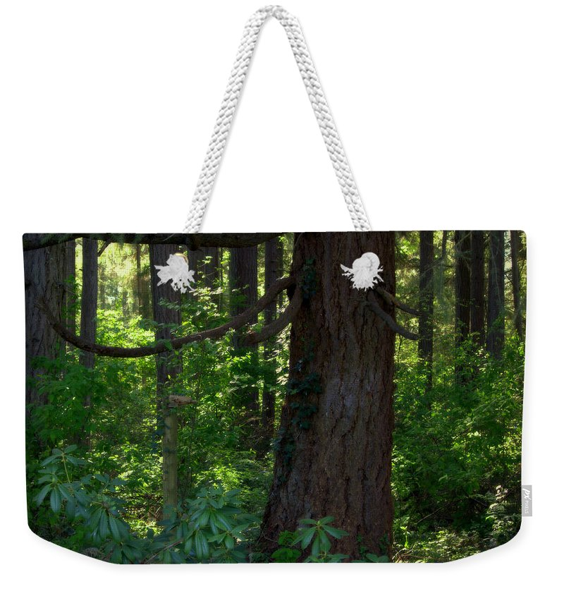 Heaven Weekender Tote Bag featuring the photograph Lil' Piece Of Heaven by Jeanette C Landstrom