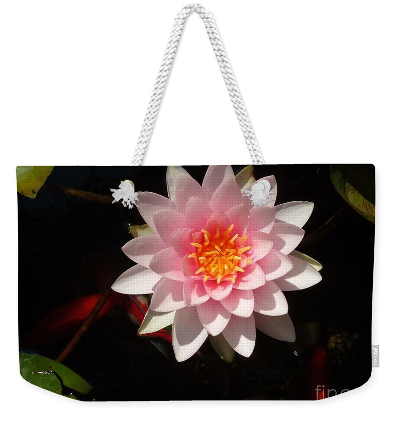 Lilly Weekender Tote Bag featuring the photograph Lilly by Jost Houk