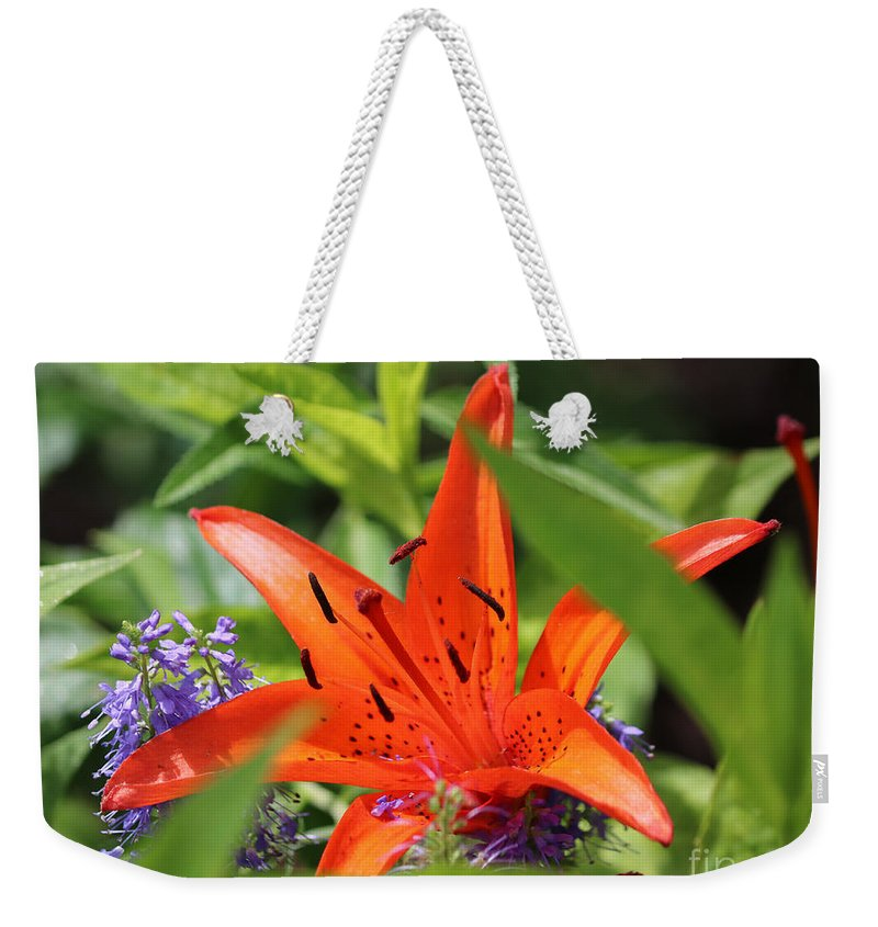 Flower Weekender Tote Bag featuring the photograph Lilly by Lori Tordsen