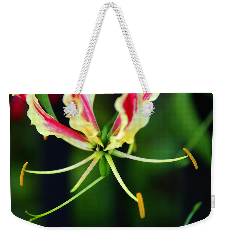 Lilly Weekender Tote Bag featuring the photograph Lilly by Susanne Van Hulst