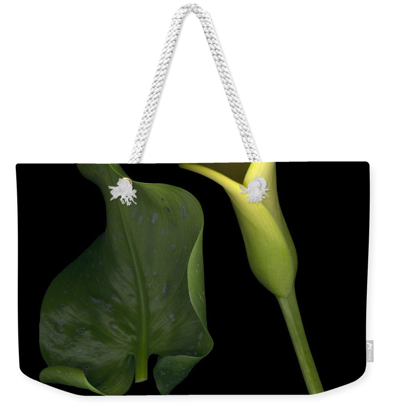 Yellow Weekender Tote Bag featuring the photograph Lily And Leaf Number Two by Heather Kirk
