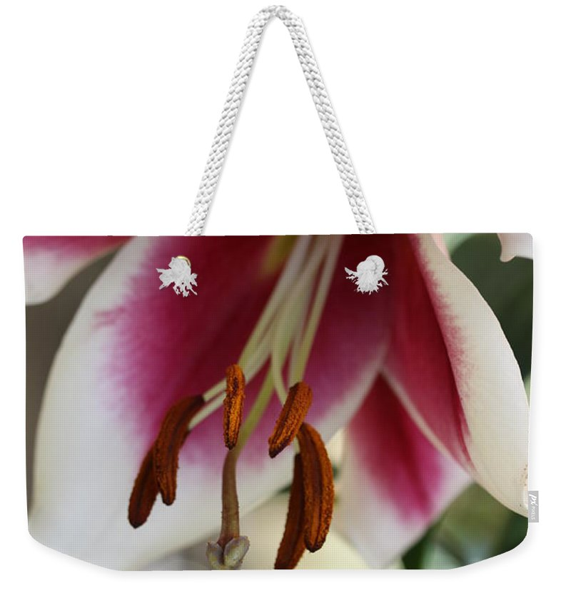 White Pink Weekender Tote Bag featuring the photograph Lily Beauty by Christiane Schulze Art And Photography