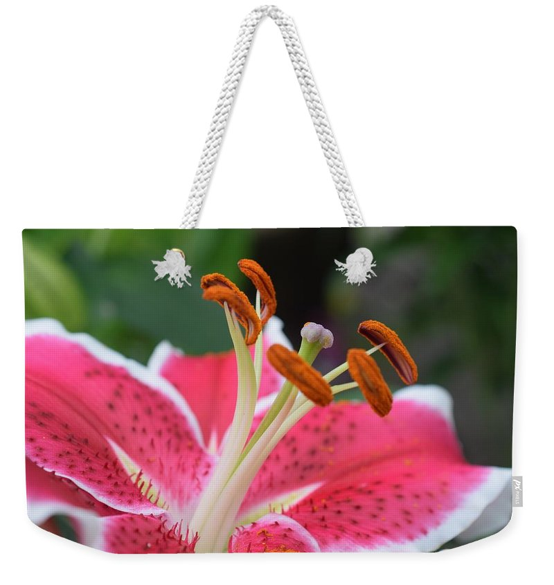 Floral Weekender Tote Bag featuring the photograph Lily by Jimmy Chuck Smith