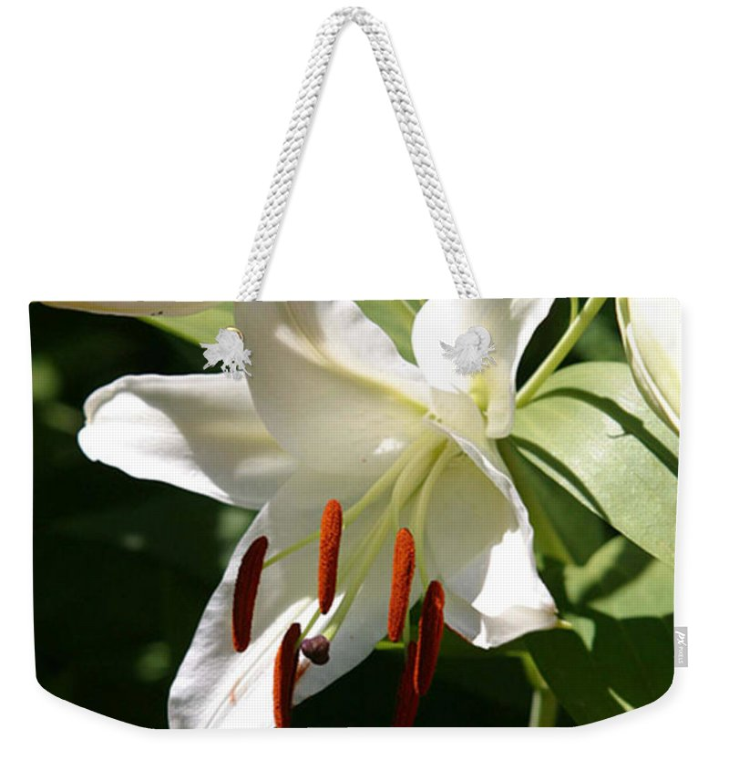 Arrangement Weekender Tote Bag featuring the photograph Lily Of White by Alan Look