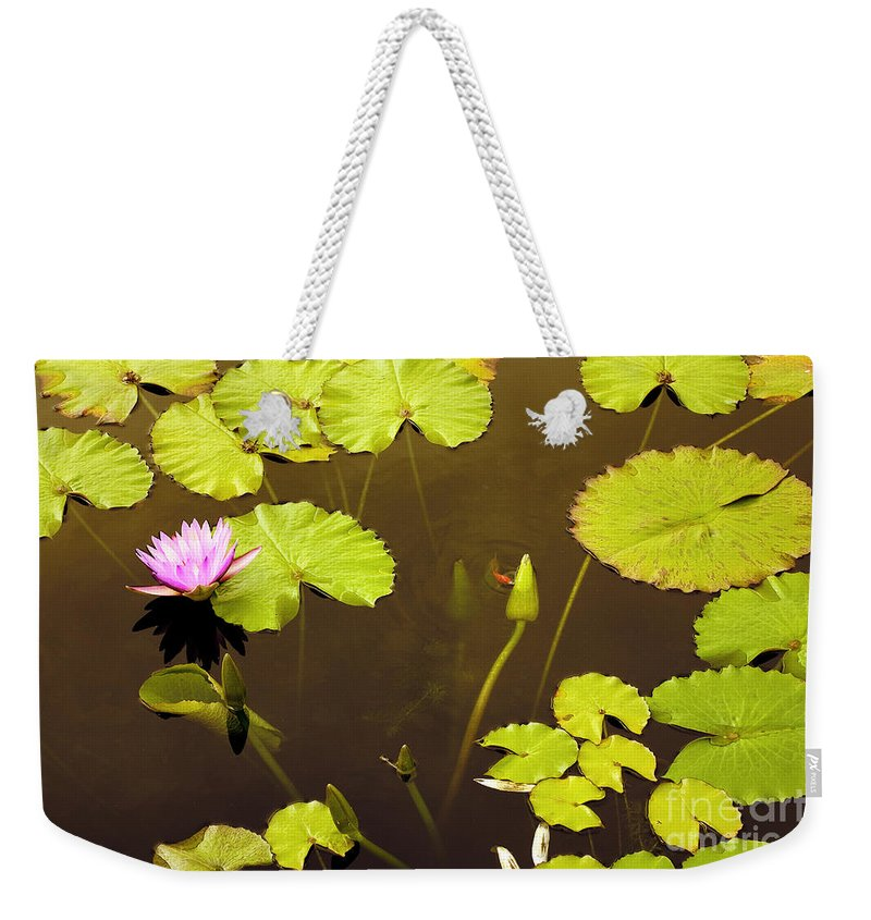 Lily Pad Weekender Tote Bag featuring the photograph Lily Pads 1 by Madeline Ellis