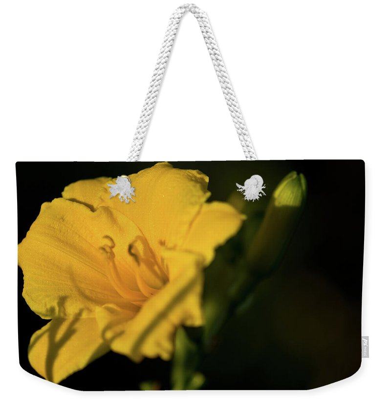 Lily Weekender Tote Bag featuring the photograph Lily by Paul Mangold
