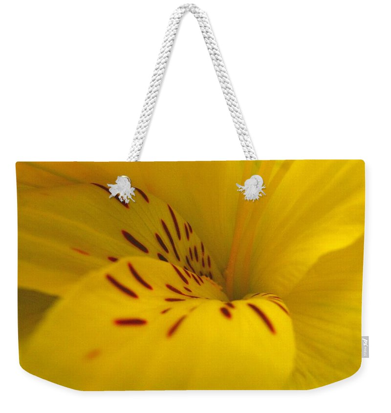 Yellow Weekender Tote Bag featuring the photograph Lily by Rhonda Barrett