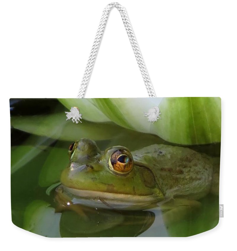 Animal Weekender Tote Bag featuring the photograph Lilyfrog - Frog With Water Lily by MTBobbins Photography