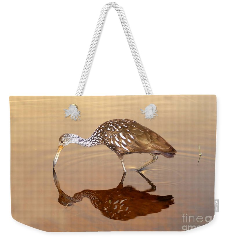 Limpkin Weekender Tote Bag featuring the photograph Limpkin In The Mirror by David Lee Thompson