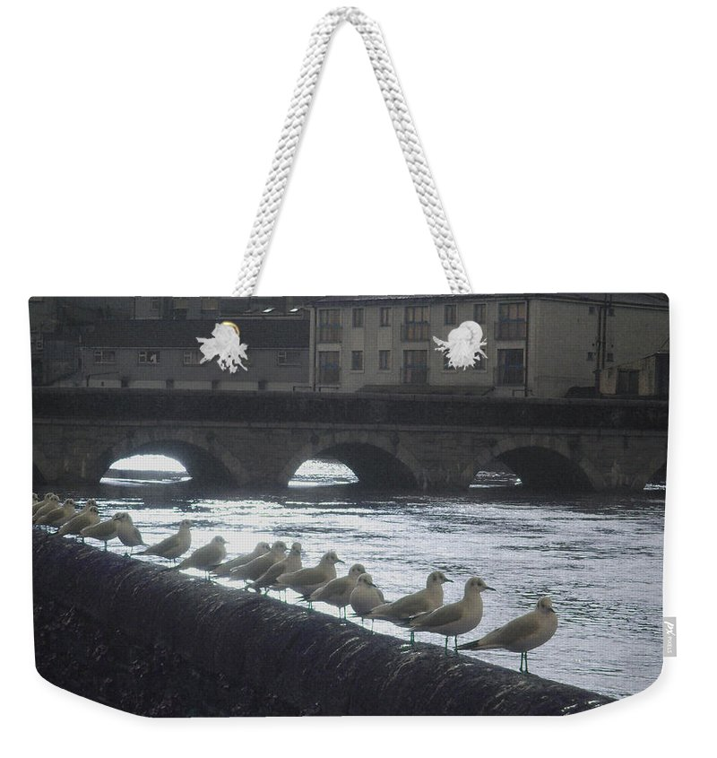 Birds Weekender Tote Bag featuring the photograph Line Of Birds by Tim Nyberg