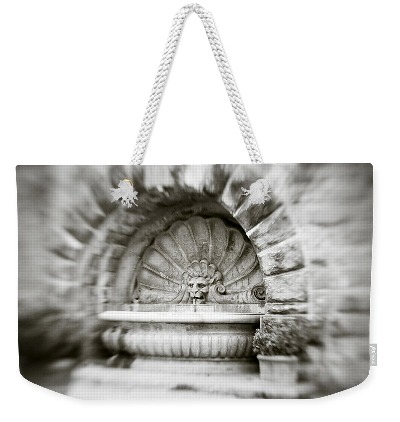 Lion Weekender Tote Bag featuring the photograph Lion Head Fountain by Marilyn Hunt